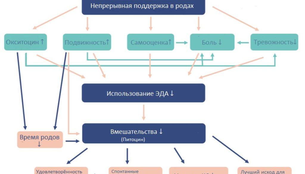 концептуальная_модель